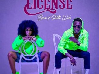 Becca Ft. Sarkodie _ Driving License