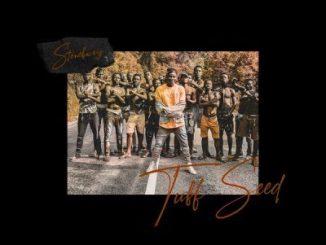 Stonebwoy _ Tuff Seed