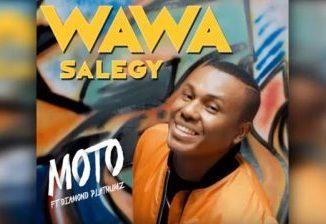 Wawa Salegy Ft. Diamond Platnumz _ Moto