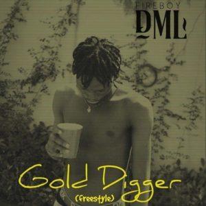 Fireboy DML _ Gold Digger