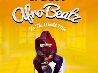 DJ Baddo _ Afro Beatz To The World Mix