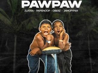 Zlatan - Unripe Pawpaw