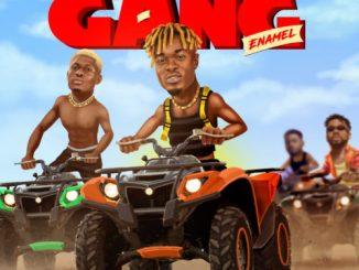 Enamel - Gang