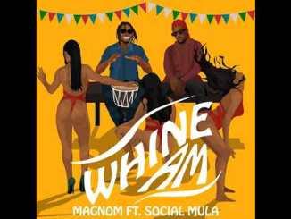 Magnom Ft Social Mulla - Whine Am