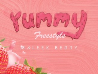 Maleek Berry - Yummy Freestyle