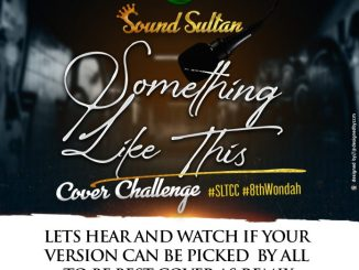 Sound Sultan - Something Like This