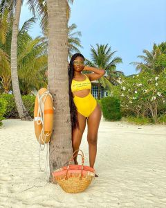 See how a man got Davido's babymama, Sophia Momodu's attention with credit alert