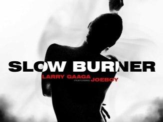 Larry Gaaga ft Joeboy Slow Burner Mp3