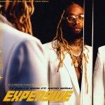 Ty Dolla $ign ft Nicki Minaj Expensive Mp3
