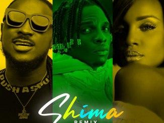 Idahams ft Peruzzi, Seyi Shay - Shima Remix