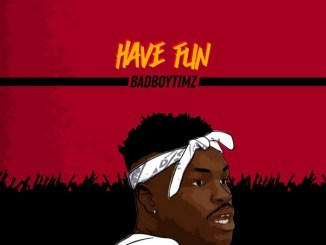 Bad Boy Timz Have Fun Mp3