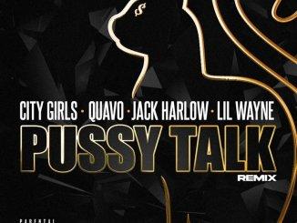 City Girls Pussy Talk (Remix) Mp3