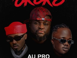Au Pro ft. Ice Prince. Jamopyper - Okoko Mp3