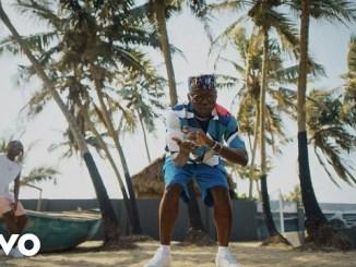 DJ Spinall ft. Fireboy DML - Sere Video