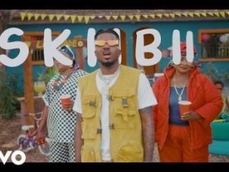 Skiibii - Are You Vhere? Video