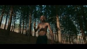 [Video] Fireboy DML ft D Smoke - Champion