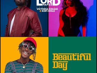 Lord Paper - Beautiful Day (Remix)