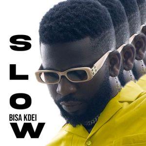Bisa Kdei - Show Me