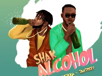Elenushuga ft DanDizzy - Shak Alcohol