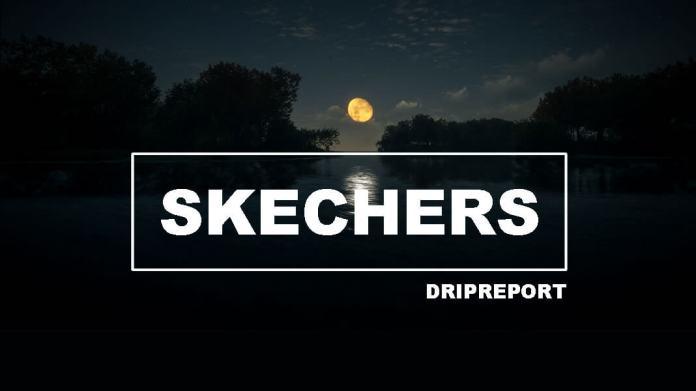 Light Up Light Up Skechers Song