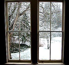 snowy day outside my window winter scene
