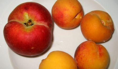 backyard homegrown peaches