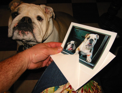 boz checks out his new greeting card