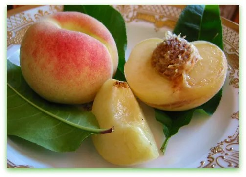 Charlotte Peach whole and sliced