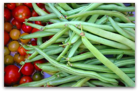 green beans fortex