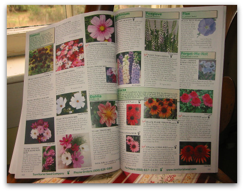 2010_01_21_blog_seed_catalogs 006
