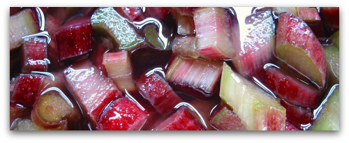 fresh rhubarb ready for jam making