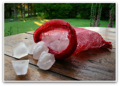 freshly picked bag of ice cubes