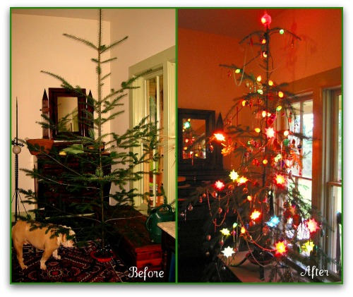 before and after christmas tree watching a charlie brown