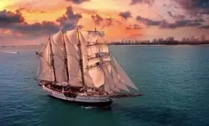 sunset sail royal albatross hero image