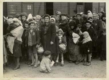 Die deutsche Wehrmacht marschierte im März 1944 in Ungarn ein. Zwischen Mai und Juli desselben Jahres wurden ungefähr 440.000 ungarische Juden nach Auschwitz-Birkenau deportiert. Arbeitsfähige wurden als Zwangsarbeiter in andere Lager überstellt. Ungefähr 250.000 ungarische Juden wurden in Auschwitz ermordet. Da die Kapazität der Krematorien nicht ausreichte, wurden Leichen auch in offenen Gruben verbrannt.