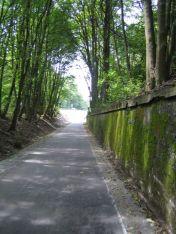 Kurz vor dem Zeittunnel in Wülfrath