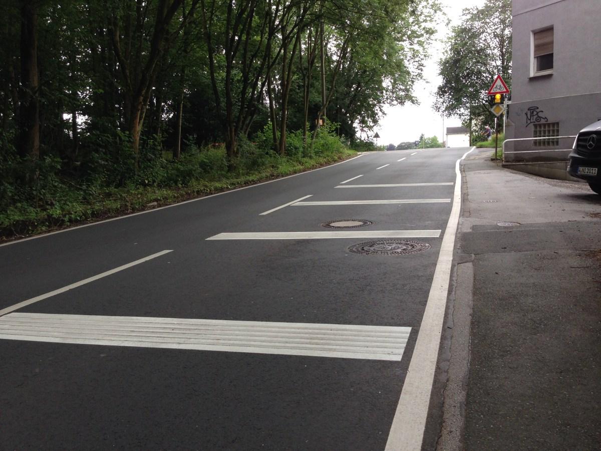 Nordbahntrasse: An der Linderhauser Straße helfen nur Starenkästen