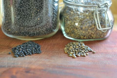 עדשים שחורות - מיצאו את ההבדלים