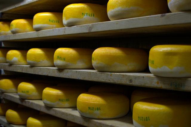 ובכל מדף, הס פן תעיר, שוכבת גבינה, עם טעם מזהיר.
