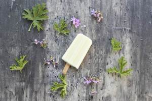 גלידת גבינת עיזים וגרניום