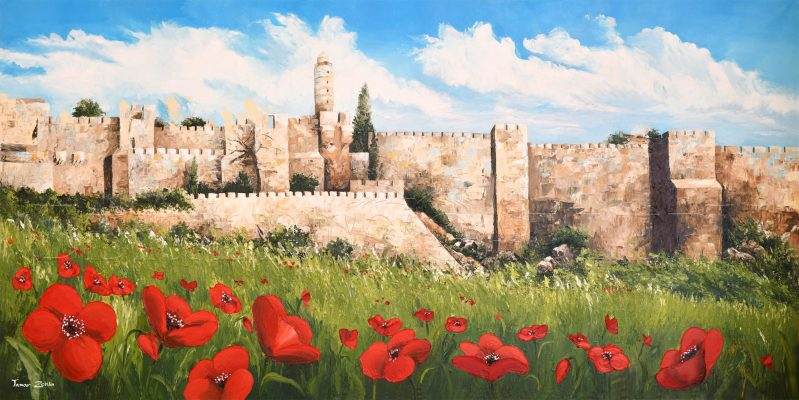 כלניות בירושלים