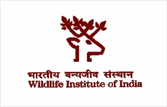 Wildlife Institute of India Recruitment 2017, Apply Online 25 Various Posts