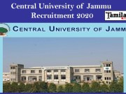 Central University of Jammu Recruitment 2020
