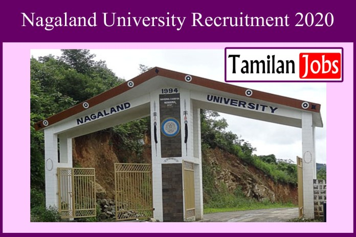 Nagaland University Recruitment 2020 Out – Apply For Lab Assistant Jobs