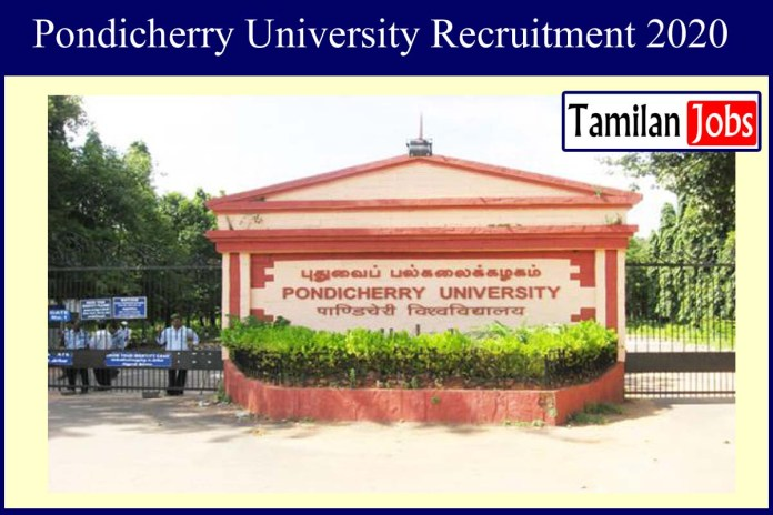 Pondicherry University Recruitment 2020 Out – Apply JRF, Project Fellow Jobs