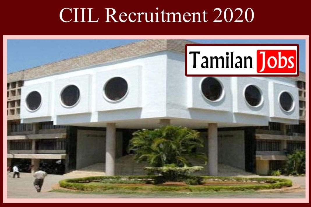 CIIL Recruitment 2020