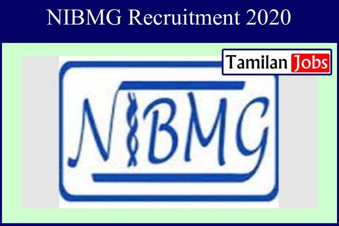 NIBMG Recruitment 2020 Out – Apply Online Project Manage Jobs