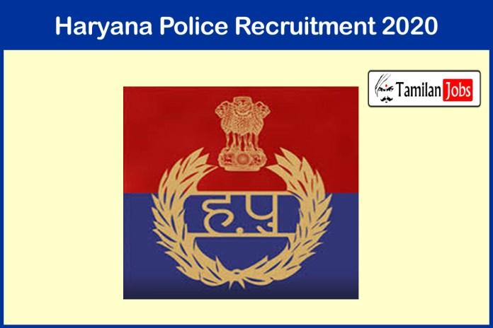 Haryana Police Recruitment 2020 Out – Apply Online Various Web Designer, Engineer Jobs