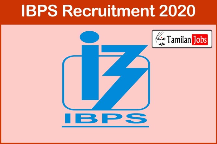 IBPS Recruitment 2020 Out – Apply Online 1557 Clerk Jobs