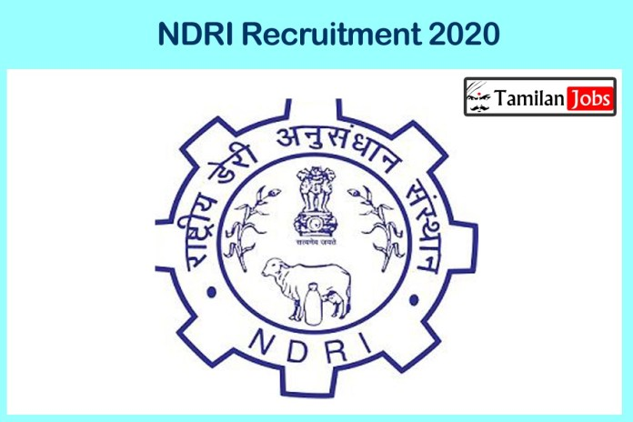 NDRI Recruitment 2020 Out – Degree Candidates Can Apply For SRF Jobs
